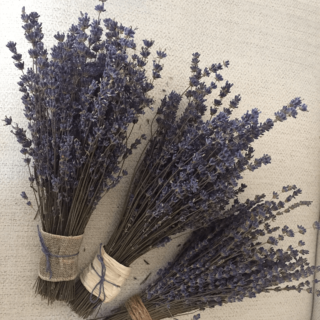 pcl-dried-lavender