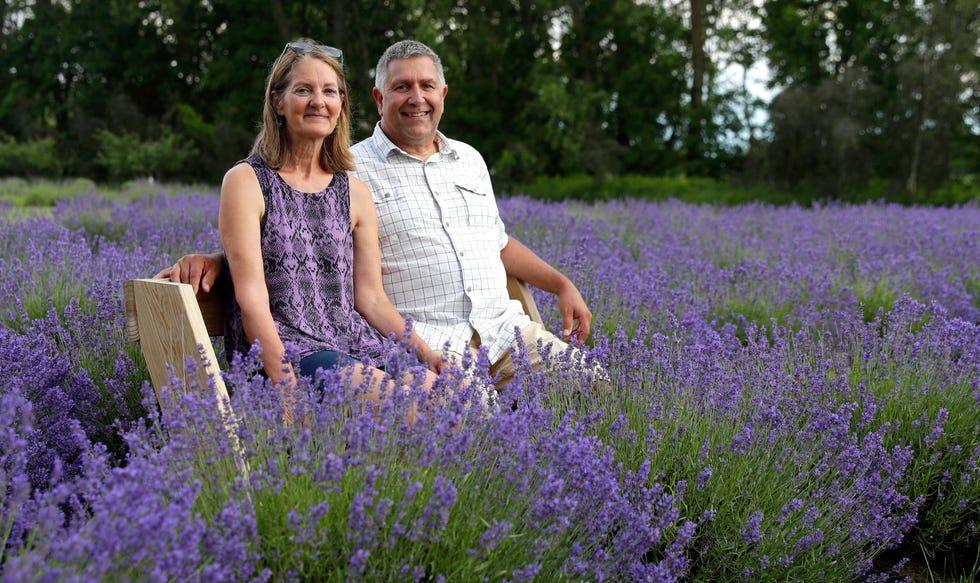 green-bay-press-gazette-potter-creek-lavender